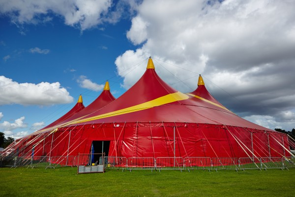 Shrewsbury Folk Festival 27-08-2015